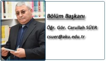 carullah_suer2b